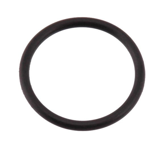 O-ring BAC 22x2 Isolator